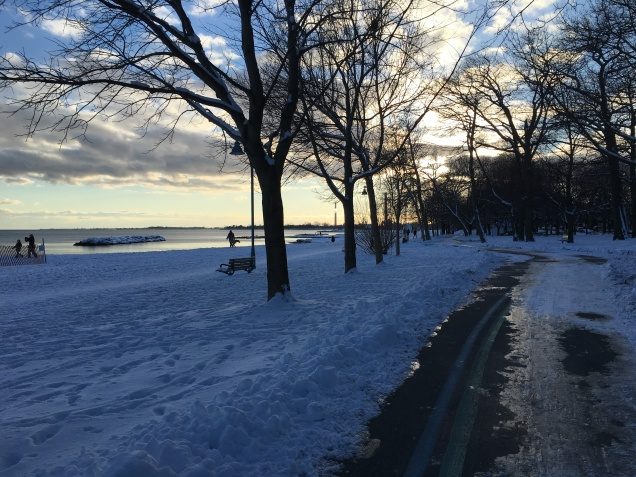 winter beach toronto